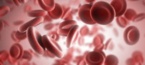 Platelet Rich Plasma Therapy.jpg